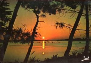 Une carte postale de Plouvien (Mary)