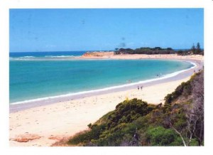 Une carte postale de Sidney (Dale)