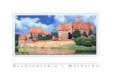 Une carte postale de Malbork (Anna)