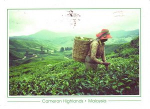 Une carte postale de Ampang Jaya (Juita)