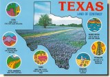 Une carte postale de Corpus Christi, TX (Rudy)