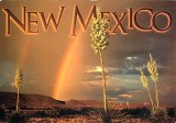 Une carte postale d'Albuquerque (Cynthia)