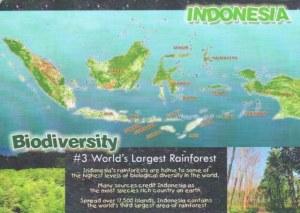 Une carte postale de Jakarta (Frenny)