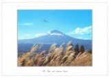 Une carte postale de Saitama (Mami)