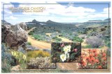 Une carte postale de Reno, NV (Leo)