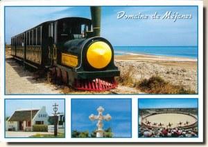 Une carte postale de Camargue (Chloé)