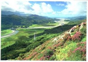 Une carte postale du Pays de Galles (Nic)