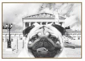 Une carte postale de Vienne