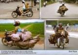 Une carte postale de Saigon (François le voyageur)