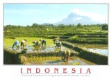 Une carte postale Jakarta (Sophia)