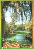 Une carte postale de Floride (Charles)