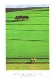 Une carte postale de Hoopstad (Marietjie)