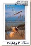 Une carte postale de Floride, FL (George)