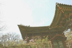 Une carte postale de Suwon (Julie)