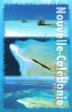 Une carte postale de Nouméa (Les 2 Blondes)