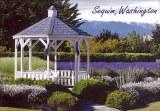 Une carte poste d'Everett, WA (Honeypond)