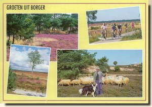 Une carte postale de Breda (Desiree)