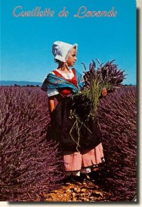 Une carte postale de Lalonde les maures (Fréderic Maire)