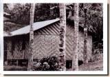 Une carte postale de Kuching (Nina)
