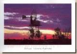 Une carte postale d'Australie (Shane)