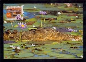 Une carte postale d'Adelaide (Jenny)