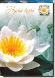 Une carte postale de Tuusula (Hanna)