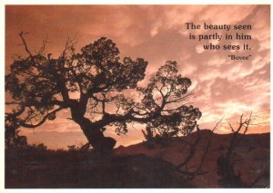 Une carte postale du Dakota du Sud (Parker)