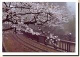 Une carte postale de Taipei (Lucy)