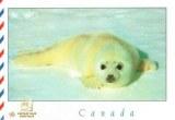 Une carte postale de Ridgetown (Carole)
