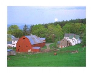 Une carte postale du Vermont (Les Morgans)