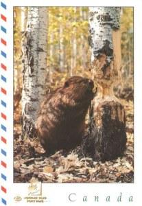 Une carte postale Ridgetown (Carole et Sierra)