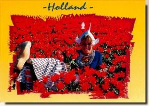 Une carte postale de Rotterdam (Sandra)