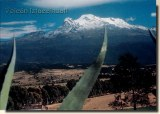 Une carte postale de Mexico (Fabiola)