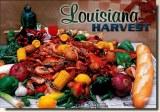 Une carte postale de la Nouvelle Orleans, LA (Cheryl)