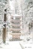 Une carte postale de Hokkaido
