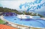 Une carte postale de Hong Kong (Wingo)