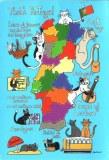 Une carte postale de Lisbonne (Patricia)