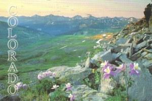 Une carte postale de Denver (Rachael)