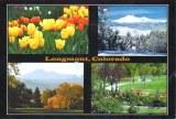 Une carte postale de Longmont (Jim)