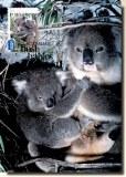 Une carte postale d'Adelaide