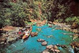 Une carte postale de Bohol (Louie)