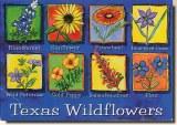 Une carte postale de Kyle, TX (Christy)