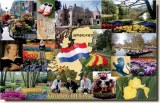 A postcard from Lisse (Raymond)