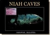 Une carte postale de Borneo (Nina J)