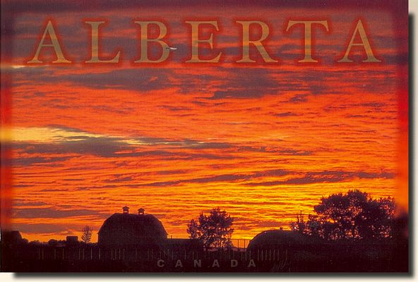 Image result for postcard from alberta