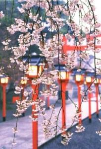 A postcard from Kitakyūshū (Akiko)