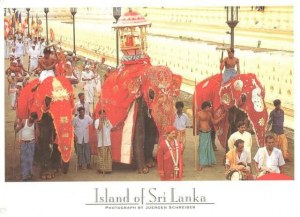 A postcard from Sri Lanka (Faustine, Ninon, Léonie, Céline and Laurent)