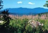 A postpostcard from Burlington, VT (Rob)