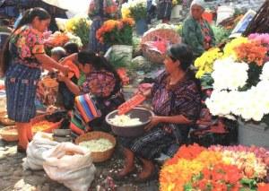 A postpostcard from Mexico (Laurent, Céline, Lilou, Léonie, Ninon, Faustine)