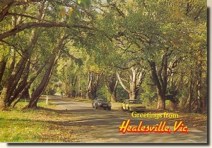 A postcard from Healesville (Shane)